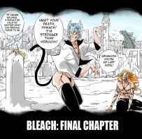 Bleach: Final chapter by Tenzen-chan