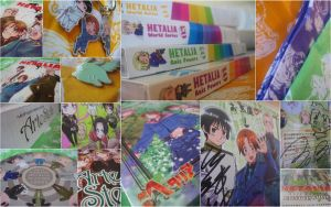 My Hetalia Collection by KataQueen