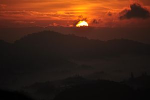 Brand New Day Cameron Highland by gordonjugah