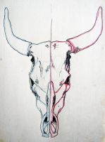 Bull Skull by JenTheThirdGal