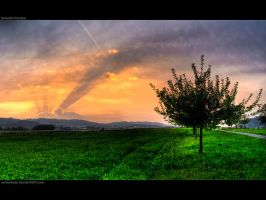 HDR '6 - towards horizon by VertexBase