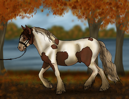 EAE Simba - HS Young Horse Autumn Event (Halter) by ElreniaGreenleaf