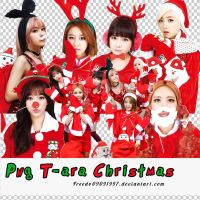 Png Merry X-mas T-ara by Freedo09091997