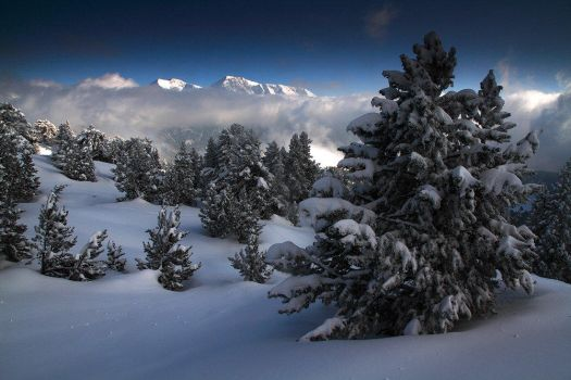 Alps In White by ZeSly