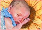 Sunflower Spring Baby ACEO by Katerina-Art