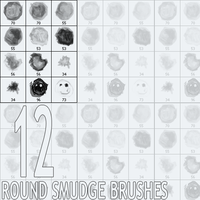 Round Smudge Brushes by Corez
