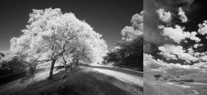 IR Stock Collection 2010 2 by usedtoit03