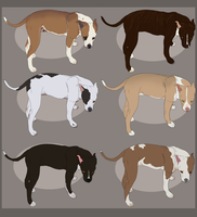 Pitbulls adoptable - CLOSED by ForeignFrontierRanch