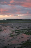 Stock - Mud Flats 2 by GothicBohemianStock