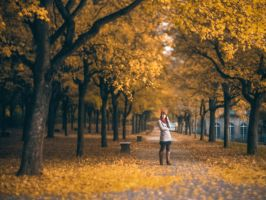 autumn in casselfornia by derlevi