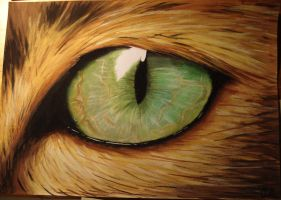 Lion eye 2 by smixova