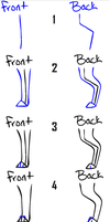 How to draw Dog_Cat legs_feet by Qexx