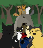 sss warrior cats bg characters by XxDillPicklexX