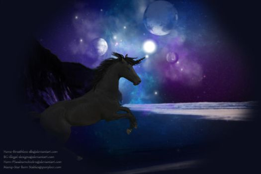 Night Walker by horselover9292