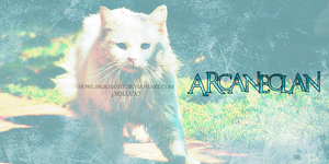 ARCANECLAN by HowlingKnight