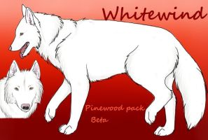 Whitewind Ref Sheet by Hotah-Wahya