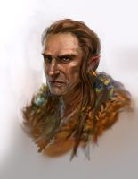 Elven shaman dude guy Daily Doodle 31 05 2013 by JordyLakiere
