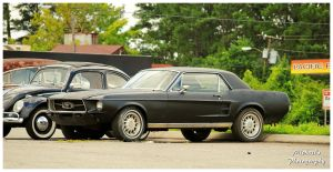 A 1967 Mustang by TheMan268