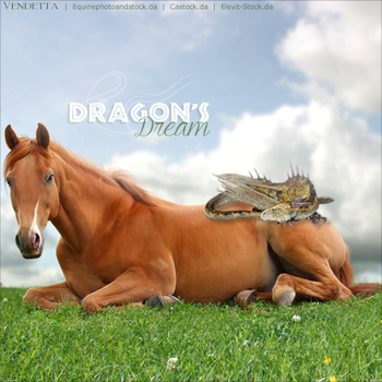HEE Horse Avatar: Dragon's Dream by VendettaImaging