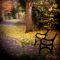 Autumn gardens by lostknightkg