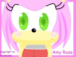 Amy Rose by louisacar