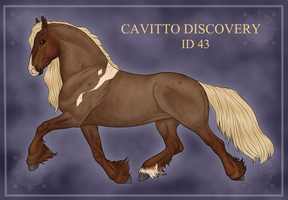 Cavitto Discovery ID 43 by noblestallion