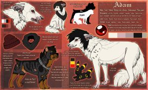 .: Adam Official Sheet Ref 2014 :. by SillyTheWolf