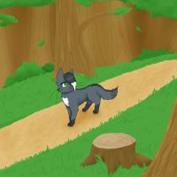 Woodland trail by Blaze-Toucan