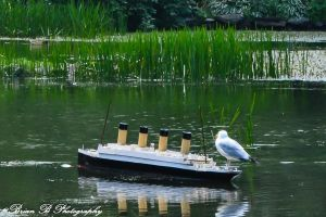 King of the World by Brian-B-Photography