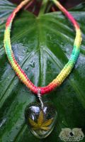 CannaCollection- Rasta Heart by Mishap
