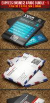 Express Business Cards Bundle#1 by EgYpToS
