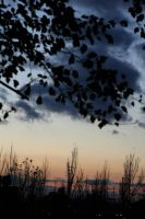 autumn sunset by blackdahlia