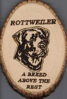Rottweiler: Take two by TheTurnerPack