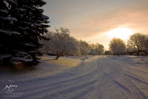 Winter Road Home by Nebey