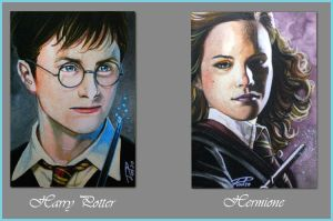 Harry Potter PSC 01 by RodGallery