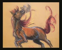 Horse Sketch by hippogriffon