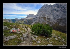 High road. by Phototubby