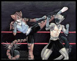 Commission 48 - Fight by Horus-Goddess
