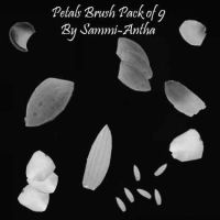Petal Brush Pack by sammi-antha