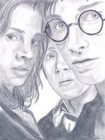 Harry Potter Trio by Slaygirl
