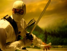 Storm Shadow - The Enemy by Riebeck