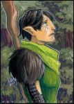 PSC - Lonesome Dalish by aimo