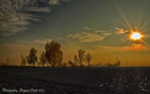 November.Hungarian landscapes. HDR-picture. by magyarilaszlo