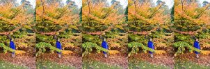 Autumn Rhadpsody In Blue And Green, Yellow And Red by aegiandyad