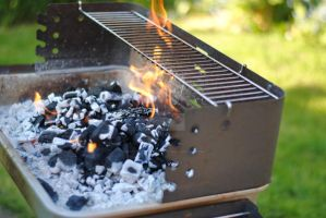 BBQ by MaePhotography2010