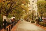 Autunm Streets Japan by RoundDrop