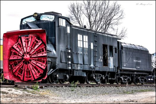 C and S Rotary No99201 by lil-Mickey