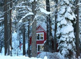 Red house in the woods by Earthmagic