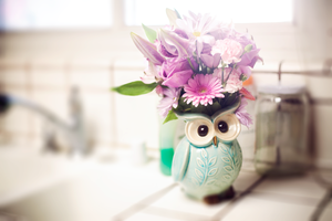 Owl Planter by candypow