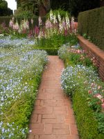 Garden Path by Cynnalia-Stock